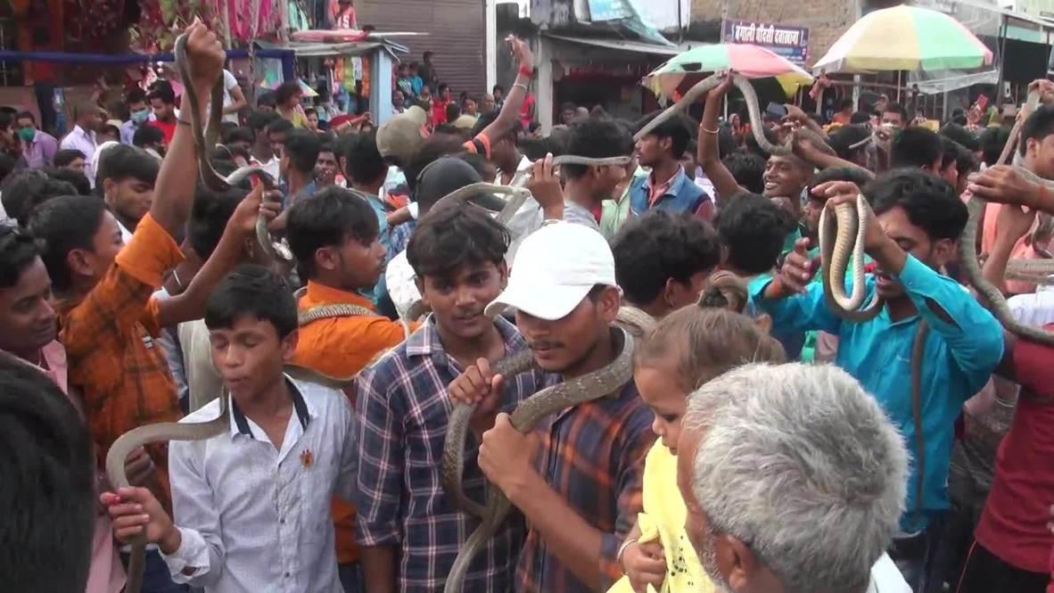 Индия: Шипение и танцы. Жители Самастипура провели ежегодный массовый ритуал со змеями