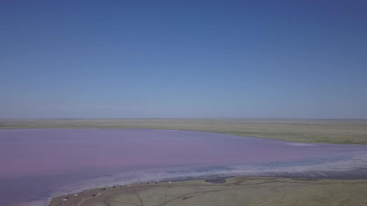 Казахстан: Розовое озеро Кобейтуз в Акмолинской области стало местом притяжения туристов