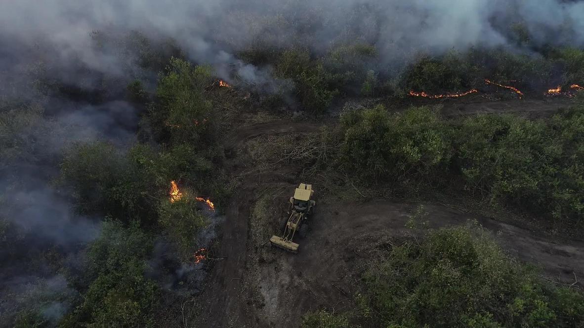 """البرازيل: تأثير بيئي """"هائل"""" على أكبر الأراضي الرطبة الاستوائية في العالم جراء حرائق غابات بانتانال"""