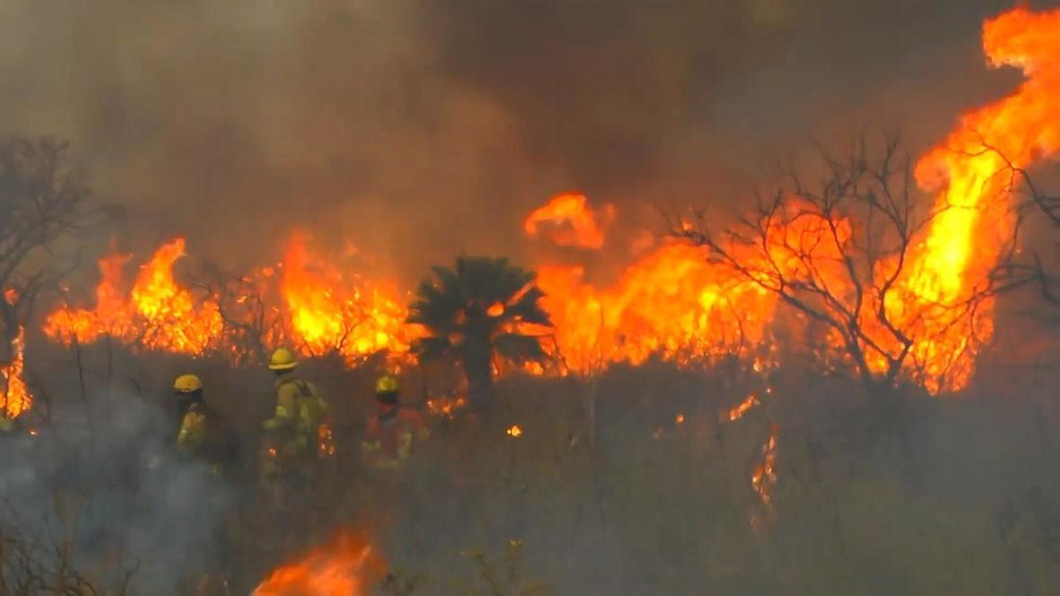 الأرجنتين: آلاف من رجال الإطفاء يكافحون لإخماد حرائق الغابات في قرطبة
