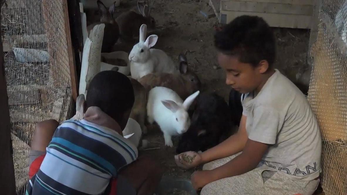 México: Escuela de Tijuana educa a los hijos de los migrantes que esperan obtener asilo en EE.UU.