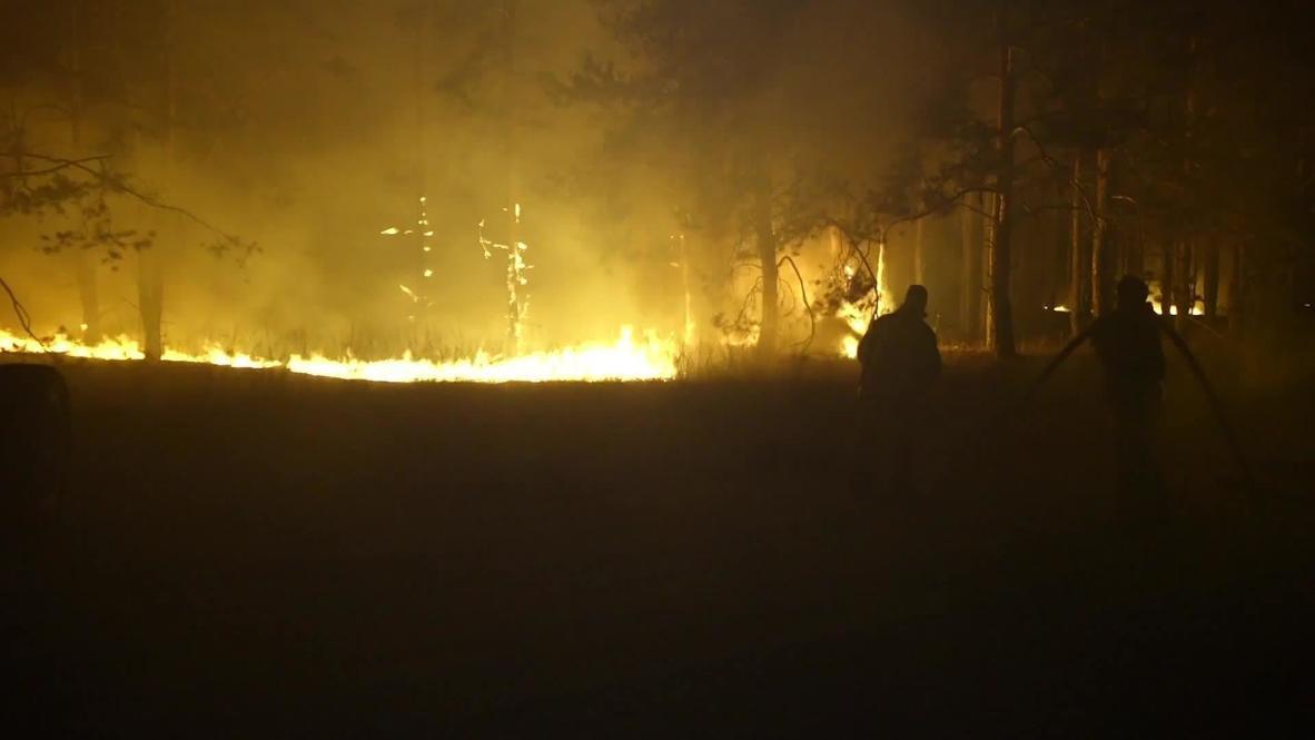 Россия: Площадь лесных пожаров в Ростовской области превысила 700 гектаров