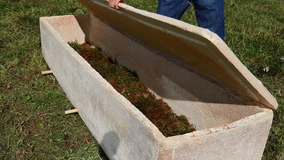 هولندا: ابتكار أول نعش حيّ في العالم يقدم حلول دفن صديقة للبيئة