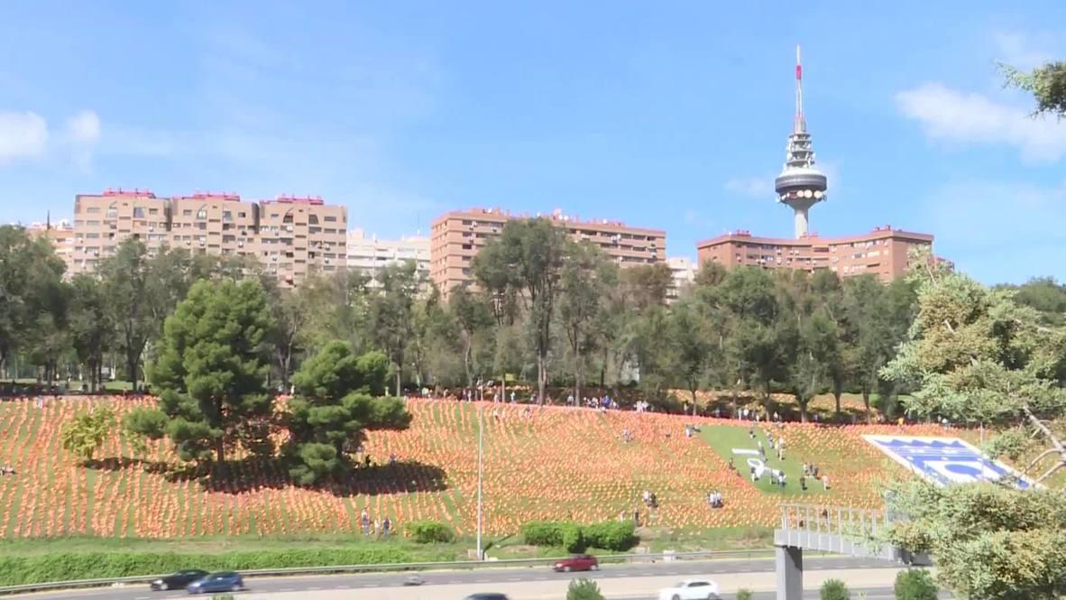 España: ANVAC coloca miles de banderas de España como homenaje a las víctimas del covid-19 en Madrid