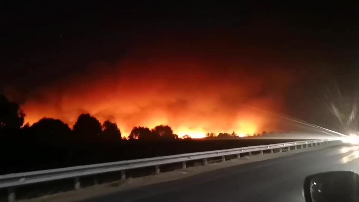 Россия: Пожары в Воронежской области частично локализованы