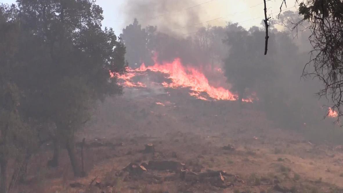 EE.UU: Los bomberos luchan contra las llamas en Santa Elena, en el valle de Napa