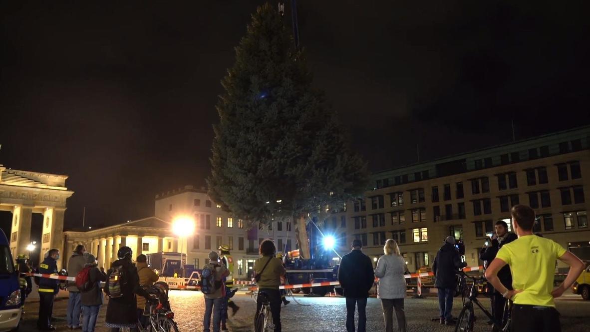 ألمانيا: نصب شجرة عيد الميلاد أمام بوابة براندنبورغ في برلين وسط استمرار الإغلاق الجزئي للبلاد