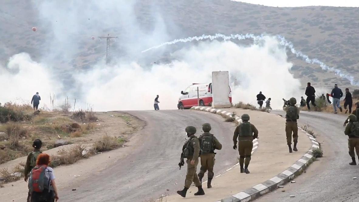 دولة فلسطين: إصابة العشرات إثر إطلاق الجيش الإسرائيلي الغاز المسيل للدموع على مظاهرة ضد خطة الضم في الأغوار