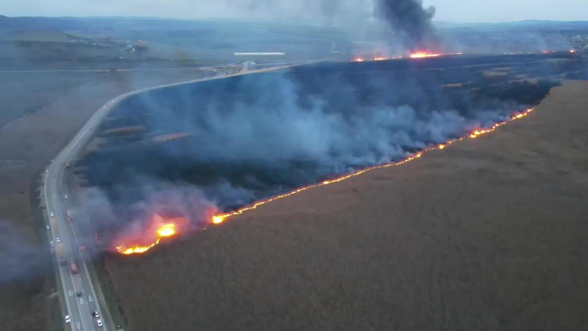 Россия: В Анапе горящий в плавнях камыш сняли с воздуха
