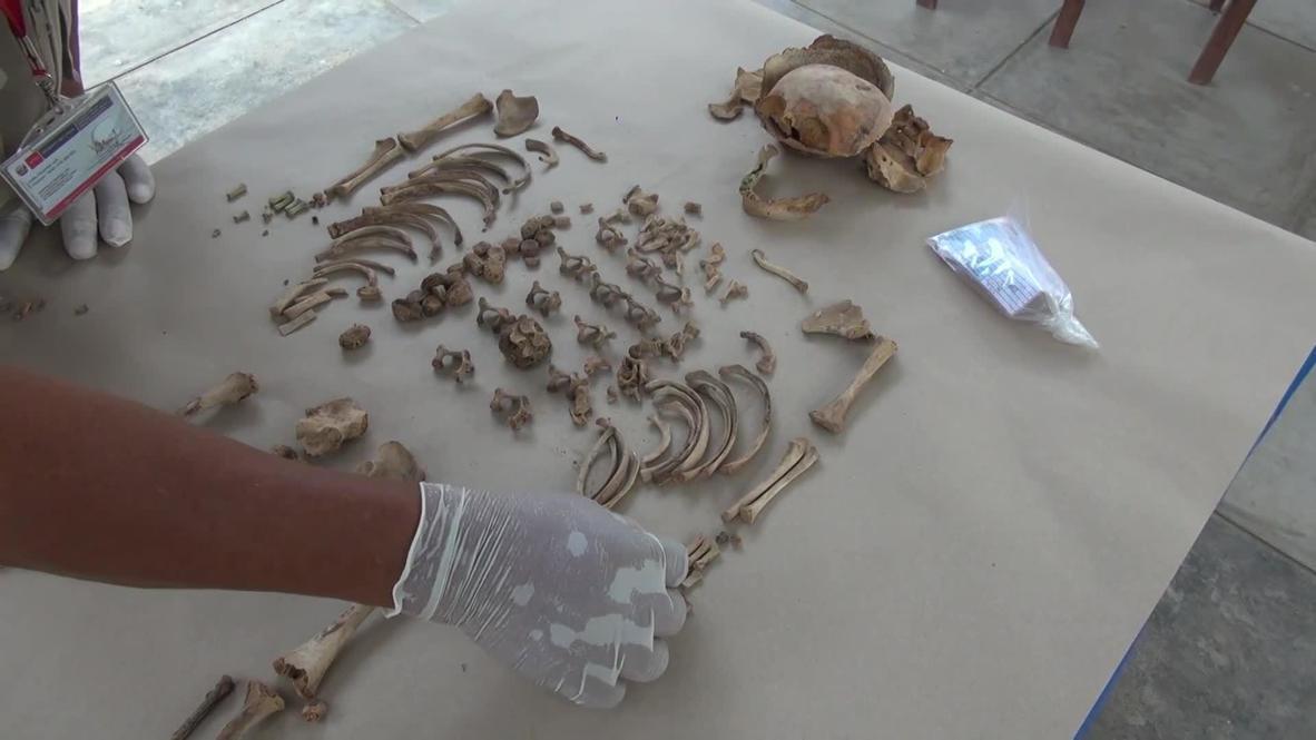 بيرو: بعد 500 عام على دفنهم.. اكتشاف عظام أطفال يُعتقد أنهم من نبلاء الإنكا في توكومي