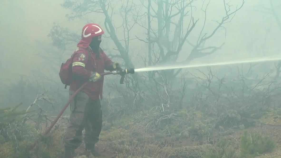 Argentina: Wildfire devastates more than 10,000 hectares in El Bolson